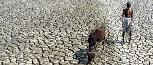 drought India 2005